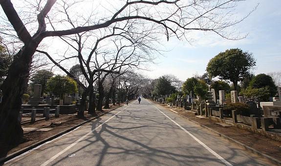 Nghĩa trang Yanaka