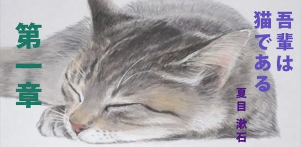 """""""Tôi là mèo"""" – Chương 1 (hoànthành)"""