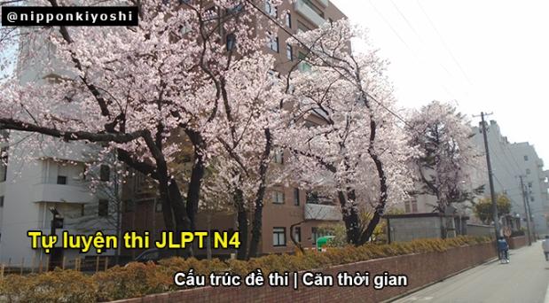 Tự luyện thi JLPT N4 (P1): Cấu trúc đềthi